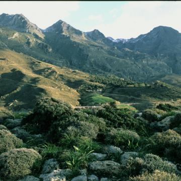 Argouliano gorge