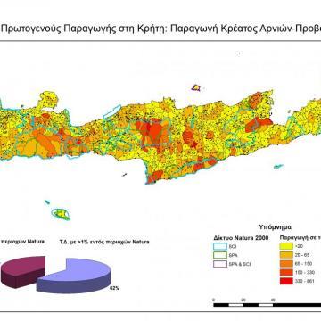 Παραγωγή κρέατος αρνιών και προβάτων στις ΤΚ της Κρήτης
