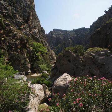 Preveli gorge