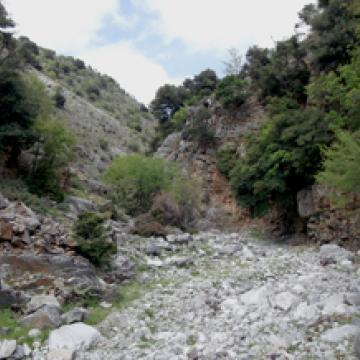 Zoniana gorge