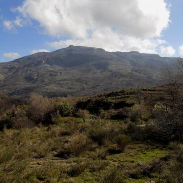 Eastern slopes of mount Kedros