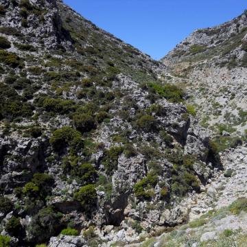 Kissano gorge