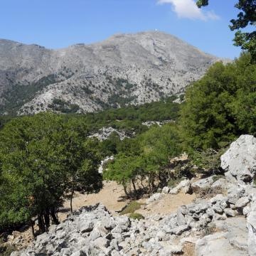 Plateau Vromonero