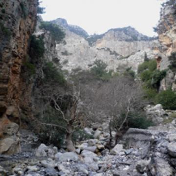 Rouvas gorge, next to Zaros village