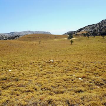 Plateau Pentaxeris, northwest of Kroussonas