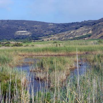 The wetland of Afrathias