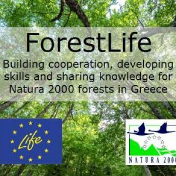 LIFE ForestLife