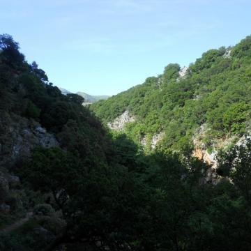 Το φαράγγι Πατσού, κοντά στον Άγιο Αντώνιο.