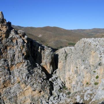 Στις κάθετες ορθοπλαγιές των φαραγγιών της περιοχής, αναπαράγεται μεγάλος αριθμός αρπακτικών.