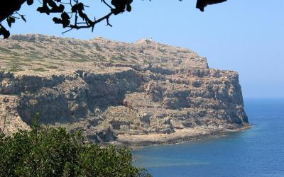 The island Agria Gramvousa