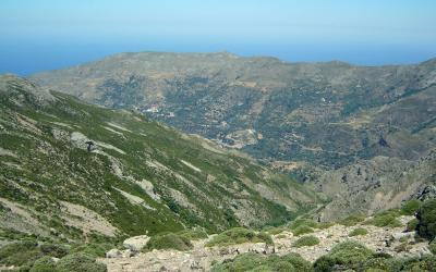 Agios Dikaios, Mega Ryaki