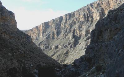 Το φαράγγι των Περβολακίων δεν έχει ανεπτυγμένη παραποτάμια βλάστηση.